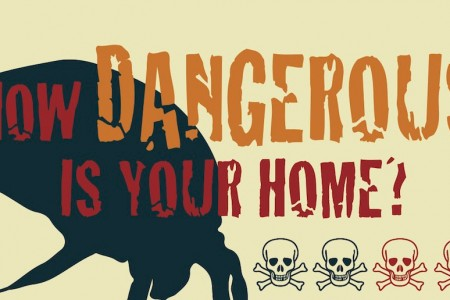 How Dangerous is Your Home?